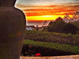 Beautiful Crystal Cove Home - Corner Lot 260 View, Newport Beach