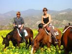 Horse riding farm nearby