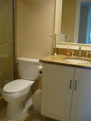 Guest Bath Also Granite Nice