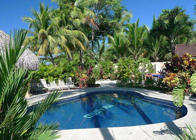 Pool and palm thatched Gazebo