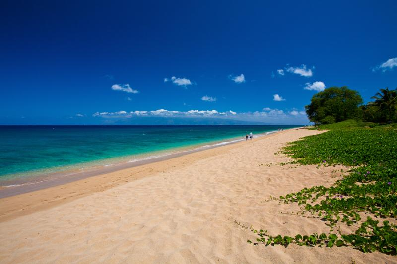 Your Beach in Front of Sea Shells Beach House! Amazing Walks Along Kahekili Beach Park on Ka`anapali Beach