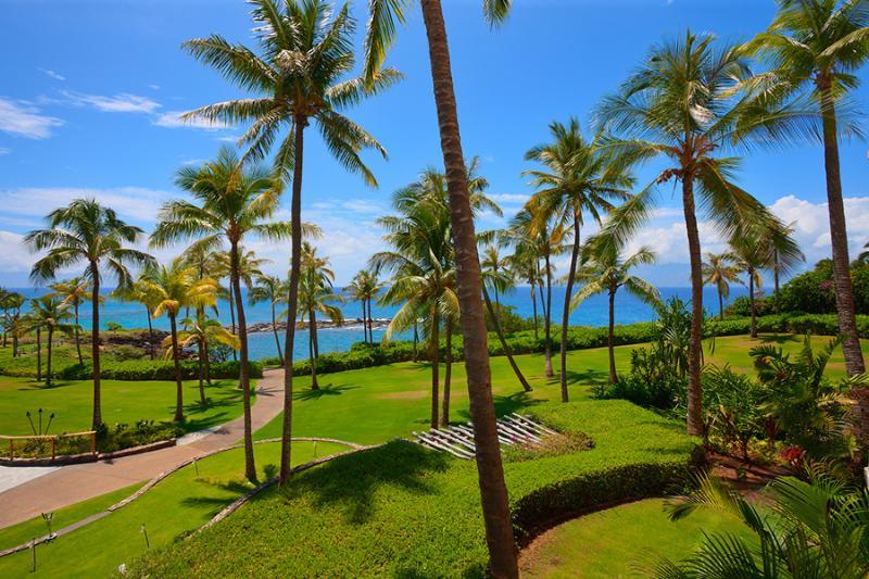 Ocean Dreams Villa 2203 Residences, Kapalua Beach, vacation rental in Kapalua