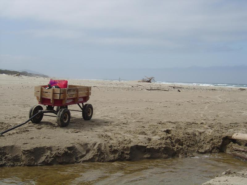 Little red wagon to haul stuff down the beach