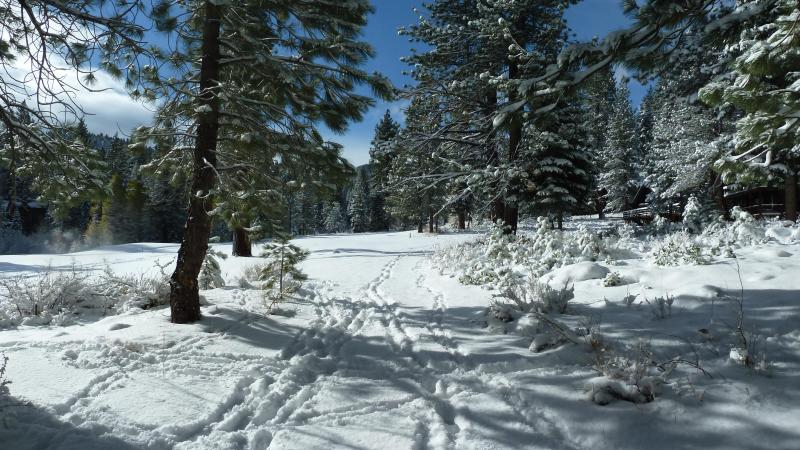 Great Sledding, Snow Shoe, Cross Country Skiing on Golf Course off our back yard