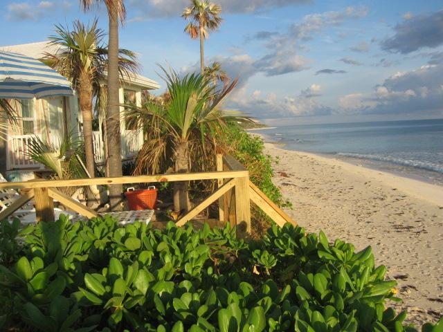 The Pink Sand Cottage  'RIGHT ON THE BEACH'  Wi Fi, holiday rental in North Palmetto Point