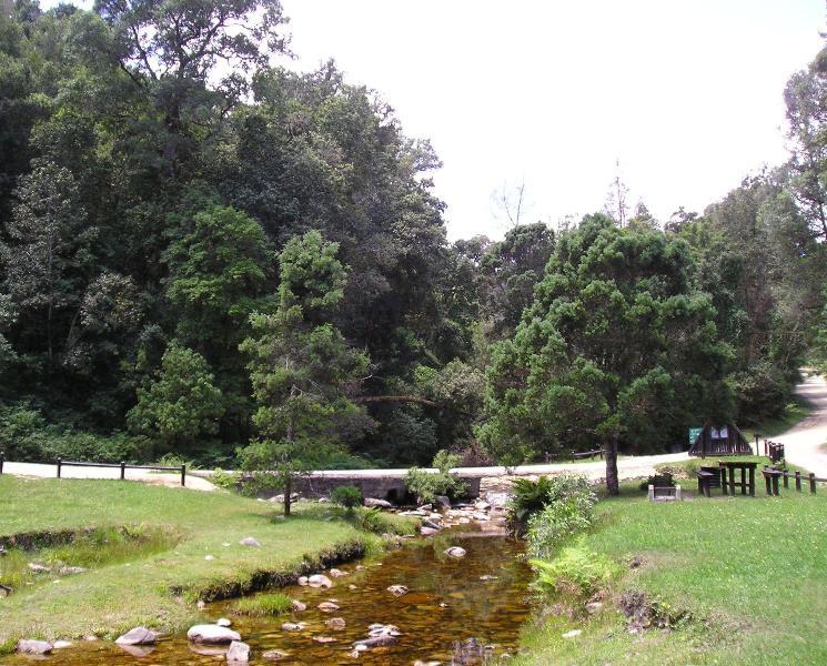 Jubileo Creek