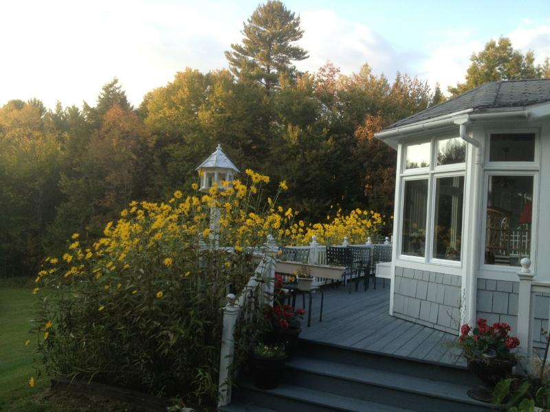 Fall flowers on the deck