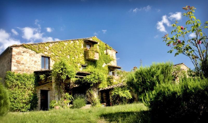 Villa Patrignone - a beautiful large Tuscany Villa, vacation rental in Castellina In Chianti