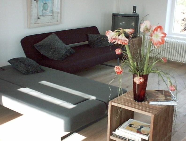 Living with sofa beds if necessairy