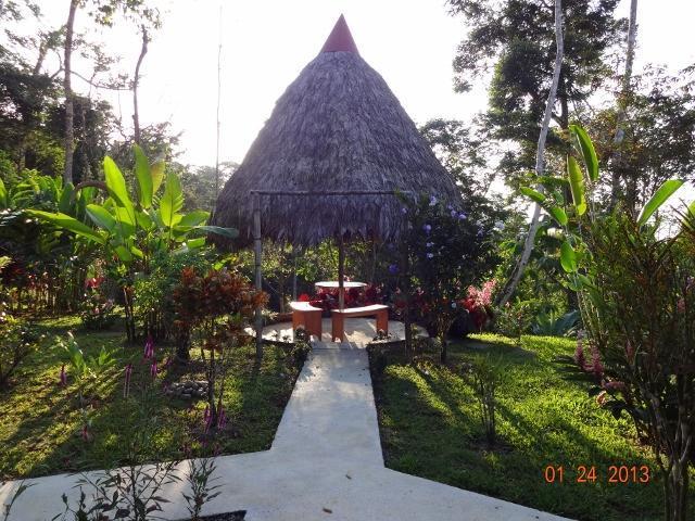 Chambres d'hôtes les jardins tropicaux exotiques w Palapa
