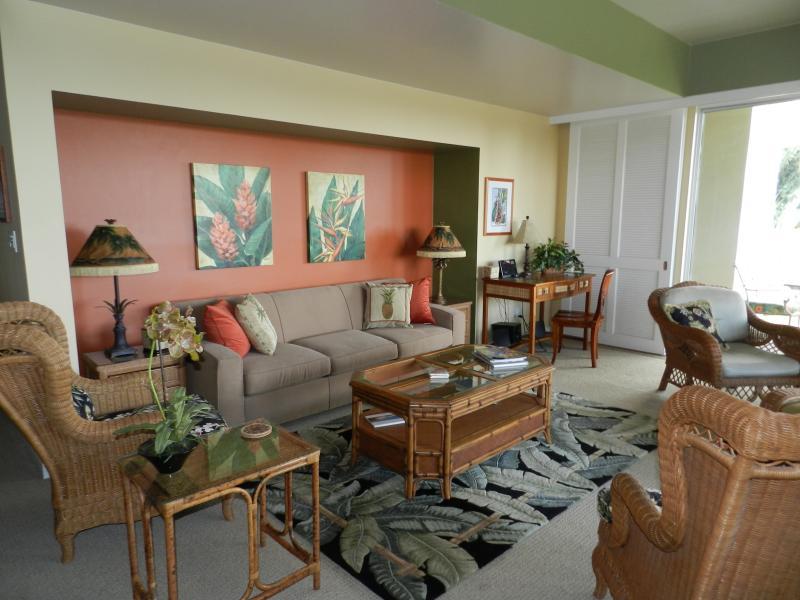 Salon - TV à écran plat - Bureau - stéréo et grande enveloppent lanai