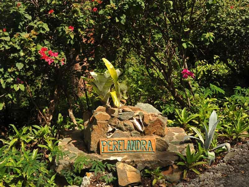 De gronden van Perelandra hebben is aangelegd met vele soorten palmbomen en tropische bloemen.