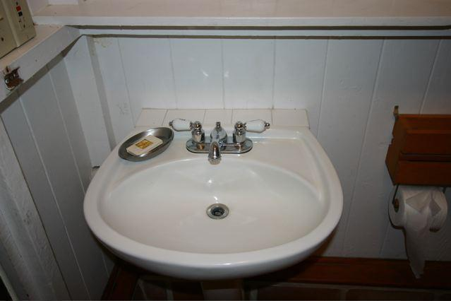 Stylish pedestal sink to compliment the stand in shower.