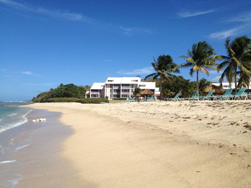 View of Caribbean Breeze from the beach. Our unit is in the middle of the only beachfront building!