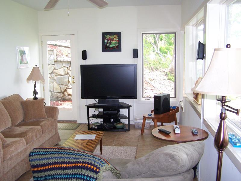 Camera familiare con 47 pollici a schermo piatto e DVD