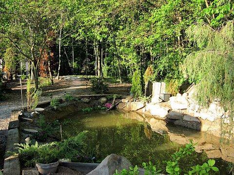 """estanque """"Ranitas"""" """", los niños les encanta contar las ranas, y ver a los peces. Olly Meet & Molly (los patos)"""