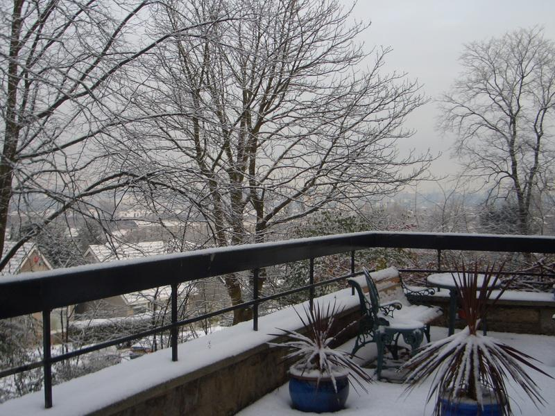 The Terrace in the Snow