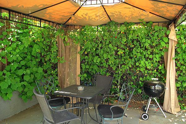 Backyard Gazebo and Sitting area-123699X34