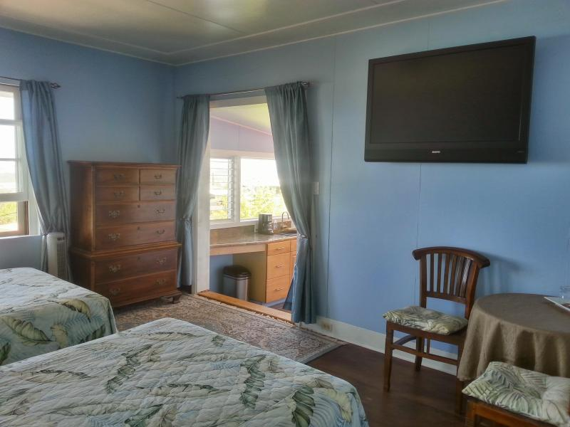 Hilltop Legacy | Sky Room In Downtown Hilo Bay with Stunning Ocean Views, holiday rental in Hilo