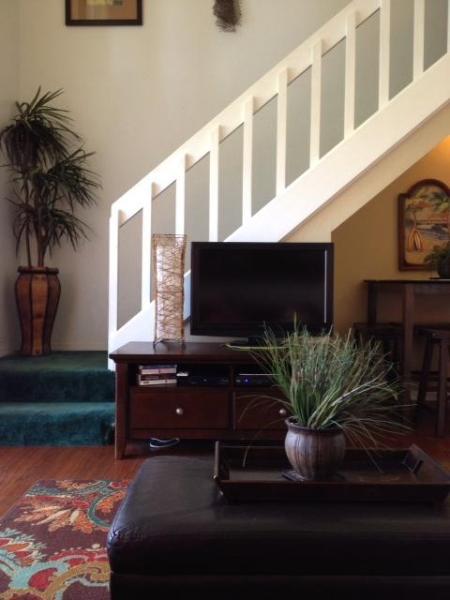 Flat Screen TV in Family Room