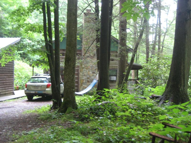 Driveway view of Wolf Branch Cabin June 2012