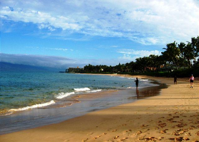 Keawakapu Beach, a short walk from the Palms at Wailea