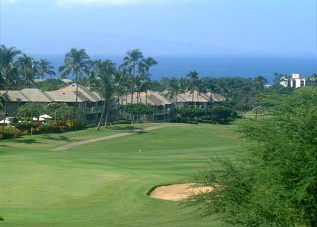 Wailea Golf Course A Short Drive From the Palms