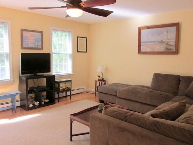 Living Room ~ Flat Screen TV