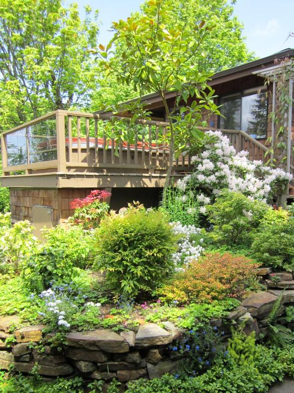 Guests say the cottage is like a private treehouse.