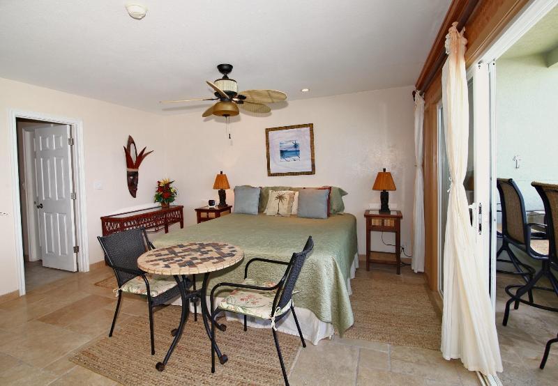 Suite chambre des maîtres avec grande promenade dans le placard et salle de bain privée