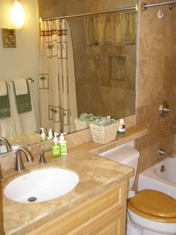 La deuxième salle de bains avec douche et baignoire