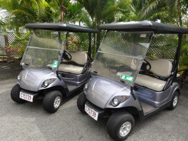 Our 2 FREE buggies