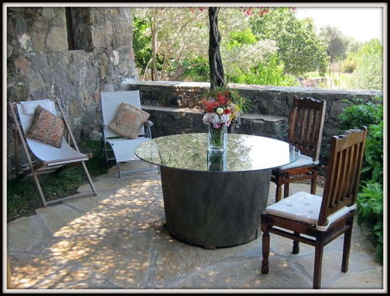 garden with dining table