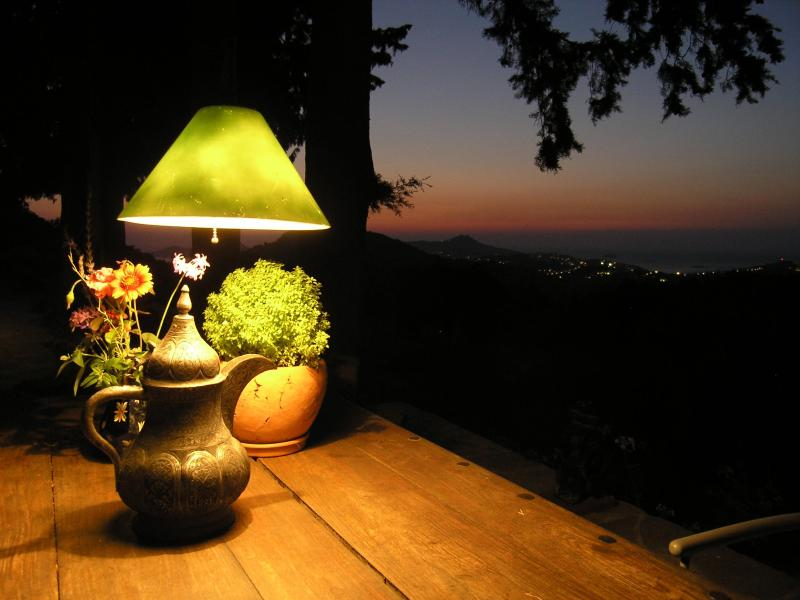 A relaxing evening