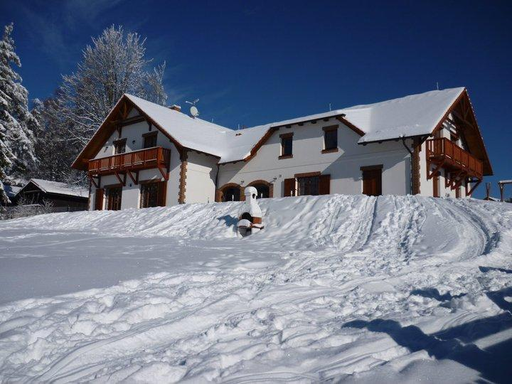 Villa - exterior view winter