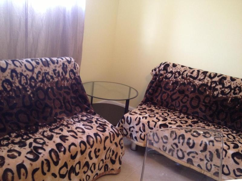 2 Full size sofa-beds in the living-room