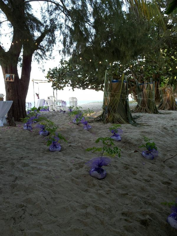 Passageway to wedding altar on our beach