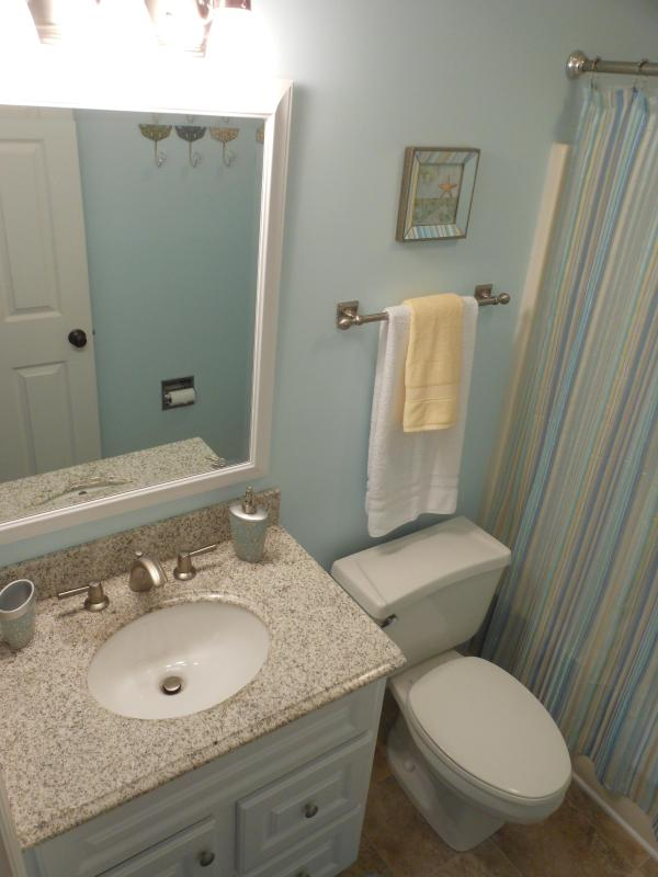 Master bathroom- Newly renovated in 2012! New tile & granite countertops