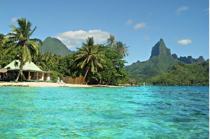 Robinson's Cove Villas - Boutique property in Moorea Island in the stunning Opunohu bay.