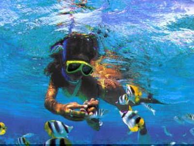 Puerto Aventuras snorkelen