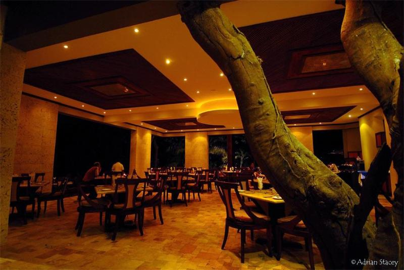 Local restaurant sea forest