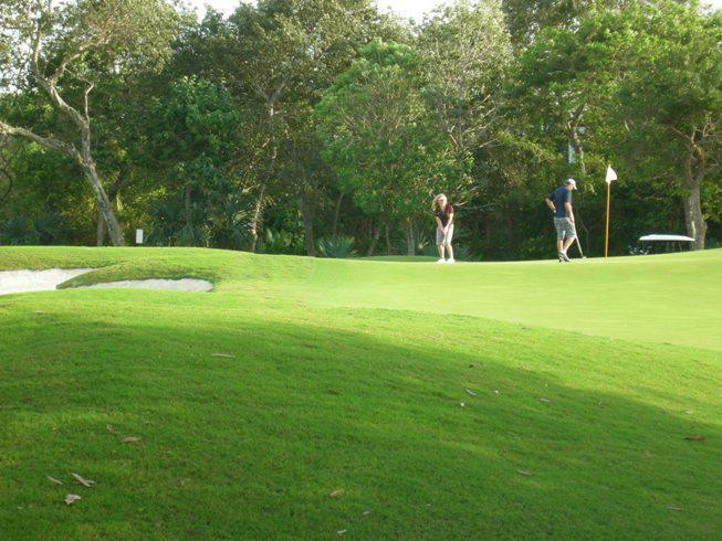 The Playacar Golf course is just behind the trees at the back of Casa Selva Caribe
