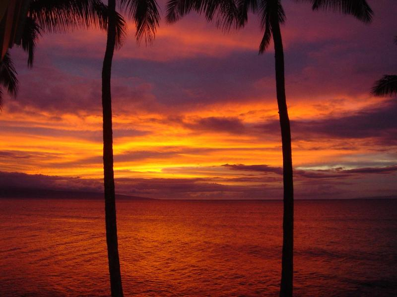 A famous blazing Maui sunset to end a perfect day in Paradise! Unforgettable!