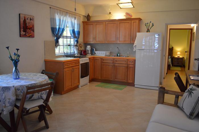 Sea-view Apartment - Kitchen