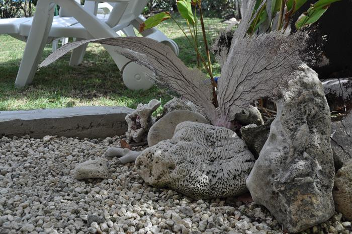 Sea-view Apartment - Coral stones in the garden