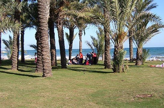 There are several grassy areas right on the beach - it's a nice idea....