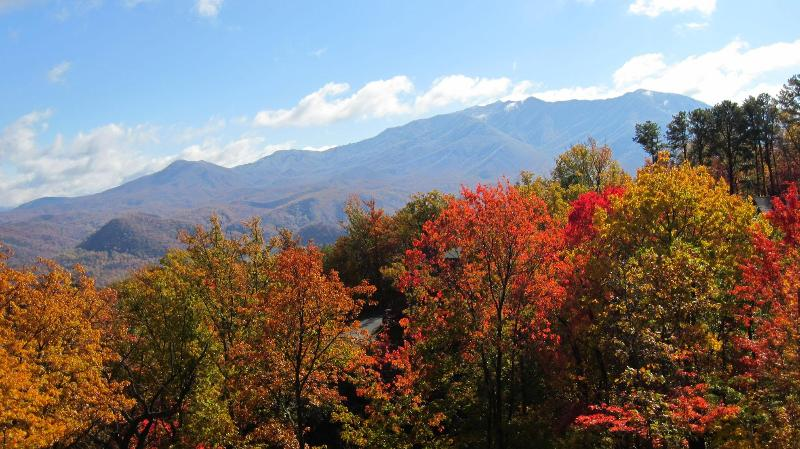 Autumn view of Mt.LeConte from the main deck