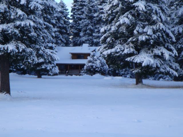 Cabin in January