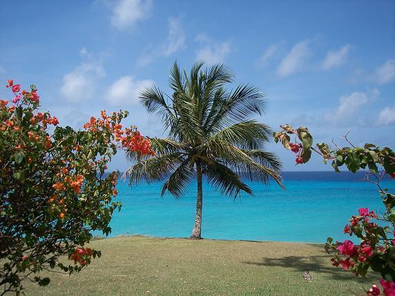 Vackra karibiska havet i närheten av Calypso