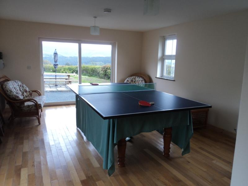 Full size table tennis